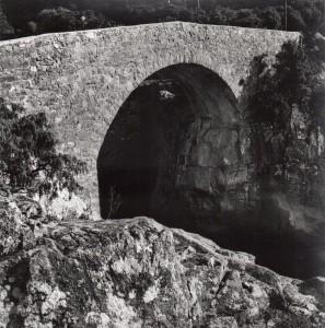 Le pont génois   Ponte Vecchiu sur le Fango