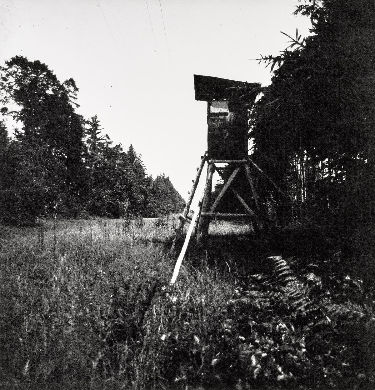 Tatort 34